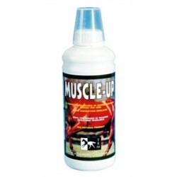 MUSCLE UP 960 ML