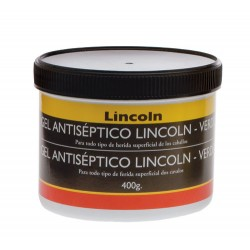 GEL ANTISEPTICO LINCOLN