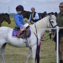 Sillas para ponis